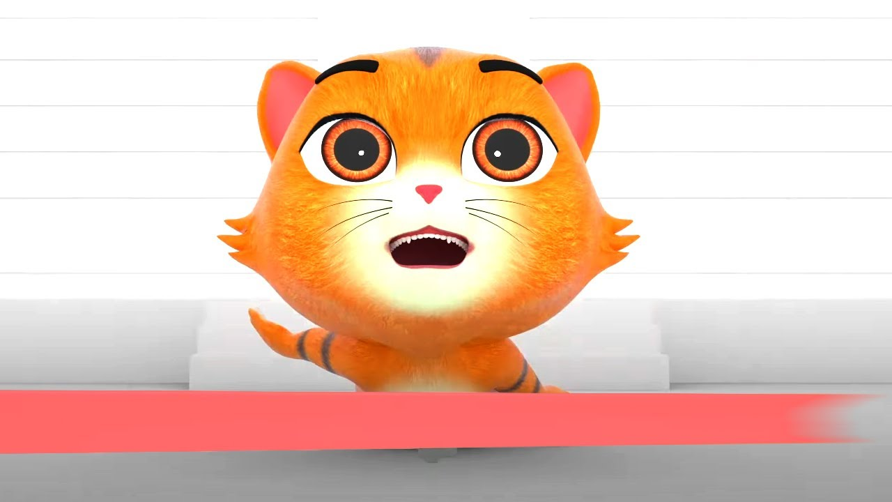 Paw Packs Desenhos animados para crianças | Vídeos engraçados | Programas de bebê