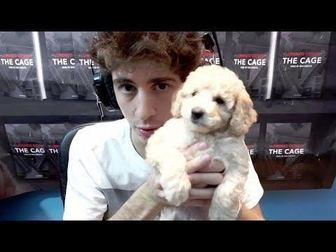 Ho... preso un cane, vi presento SAM!