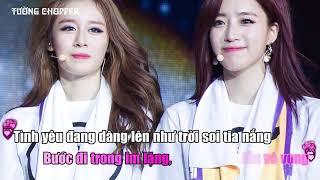 Cry Cry - Karaoke viet T-ara. Tường Chopper