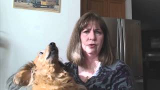 Loa Video Challenge 4- Pets/furbabys Do You Have Them?