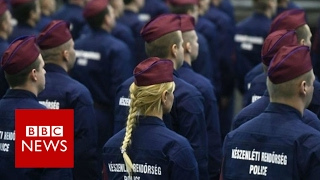Hungary recruiting 'border hunters'   BBC News