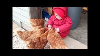 BEST FUNNY Babies Meet Chicken For The First Time    Funny Vines Compilation