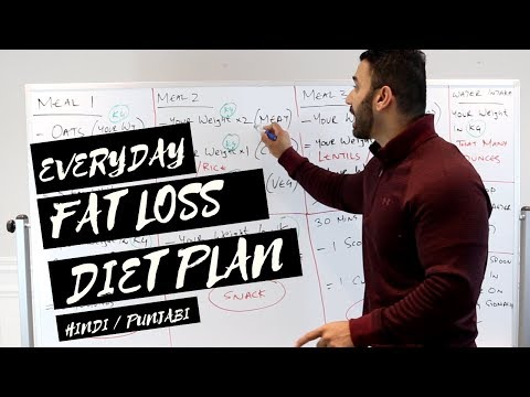 Everday FAT LOSS Diet Plan! (Hindi / Punjabi)