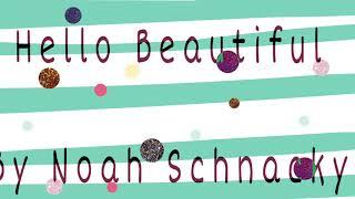 Noah Schnacky - Hello Beautiful (lyrics)