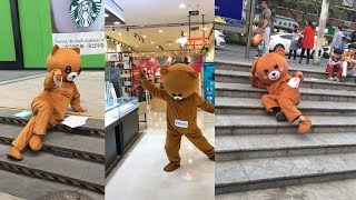 "Kumpulan video tik tok terlucu indonesia 2018 ""Beruang itu lucu"""