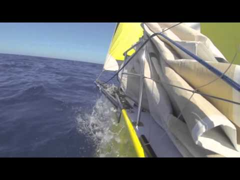 "Open50 Offshore Sailing  ""Ode to Sail"""