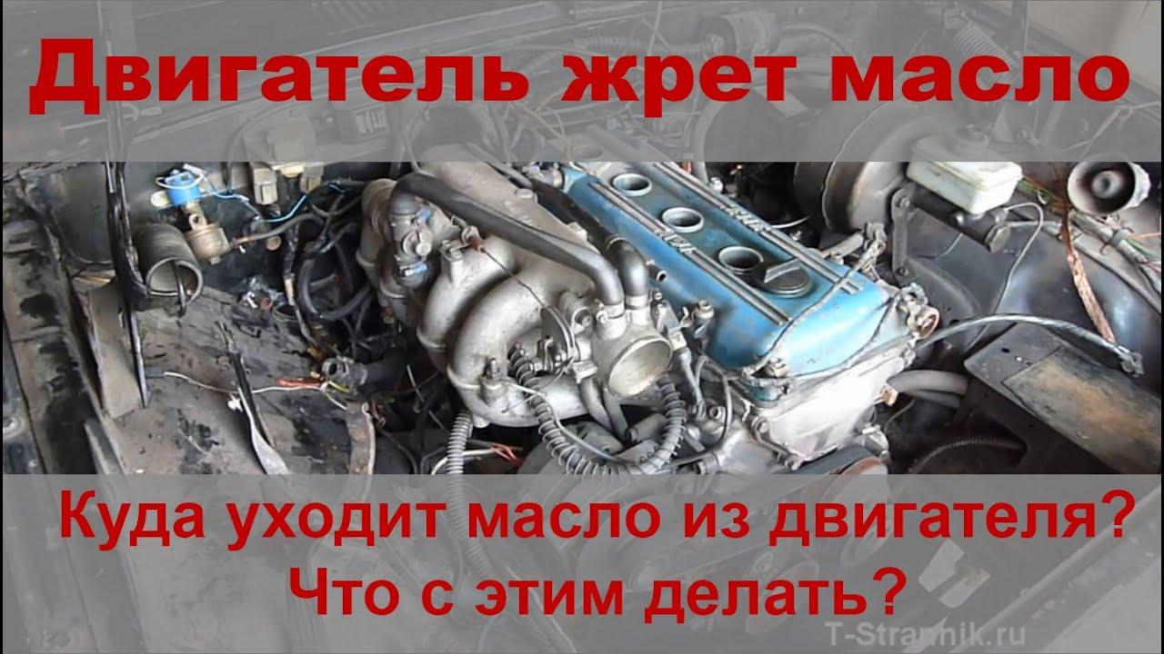 Двигатель жрет масло. Куда уходит масло в двигателе ЗМЗ 406