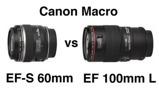 Canon EF-S 60mm Macro EF 100mm L IS Macro and Extension tubes