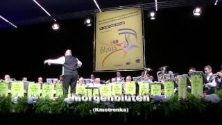 Blaaskapel Os Genüge Bree Europameister 2015 Mittelstufe