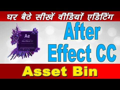 Learn Free Training, Adobe After Effect CC, Asset Bin