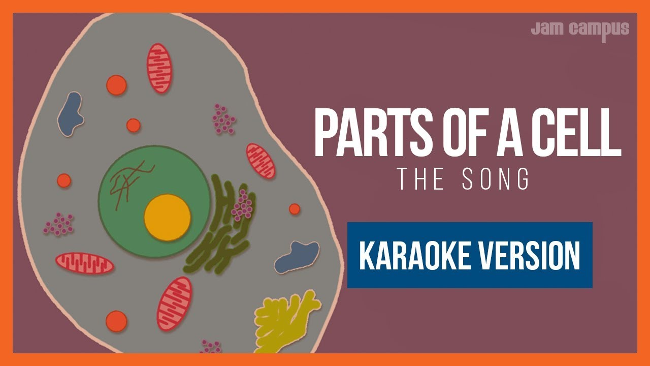 Parts Of A Song