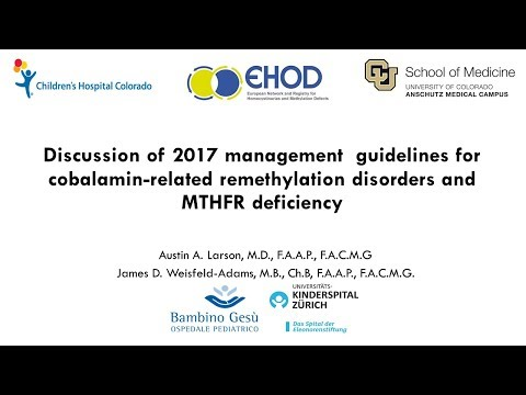 Guidelines for Diagnosis and Management of the Cobalamin-Rel