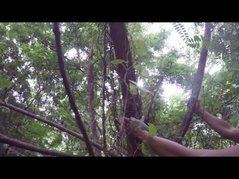 El Salto de La Santiagueña es el ejemplo de la belleza natural en los arroyos