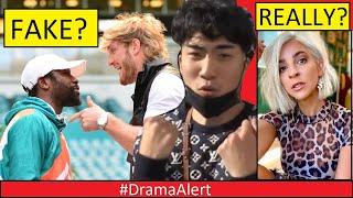 Logan Paul vs Mayweather ( STAGED / FAKE )? #DramaAlert RiceGum vs Gabbie Hanna BOXING! Mike Majlak