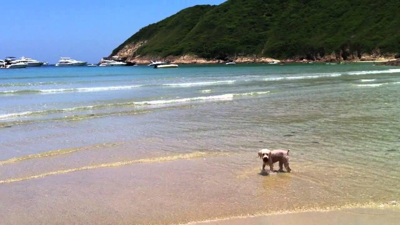 大浪西灣A【23﹣07﹣2011】 - YouTube
