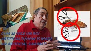 CUM SE FACE UN ROI ARTIFICIAL?! (CC ENG) thumbnail