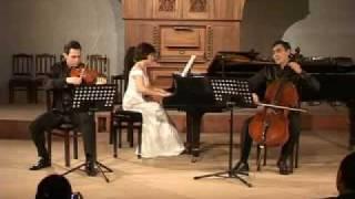 Robert Schumann Trio no.1 in D Minor op.63 1-st mov.