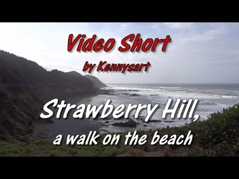 Thumbnail: Strawberry hill wayside, Oregon coast beach and tide pools