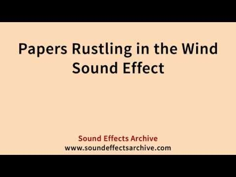 Papers Rustling in the Wind Sound Effect - Royalty Free