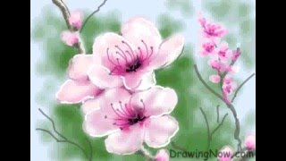 How To Draw Peach Blossom