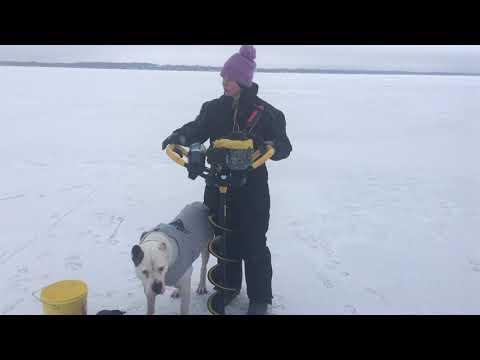 Cooks Bay, Lake Simcoe, January 14, ICE REPORT