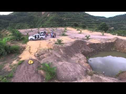Palm Oil Plantations Aerial Surveillance