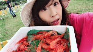 北海道羽幌のエビ祭で海老食べるLive