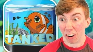Tanked Aquarium Game (iphone Gameplay Video)