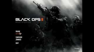 Call of Duty Black Ops 2 Fps or Lag Fix