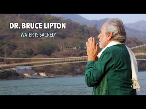 Dr. Bruce Lipton: Water is Sacred