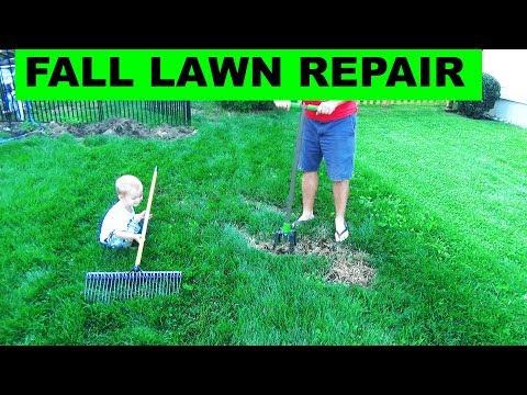 Fall Lawn Repair - Fixing Bare Spots in Lawns