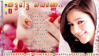 Thattamitta penne Saleem Shafi Rehna Mappila Songs Selected Romantic Mappilapattu album 2018