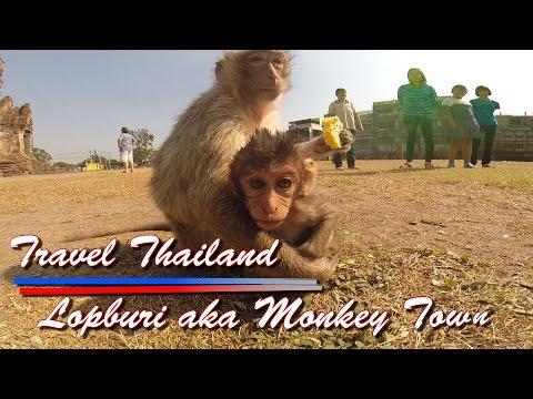 travel-thailand-lopburi-monkey-town-phra-kann-shrine-prang-sam-yot