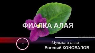 """Евгений КОНОВАЛОВ  - """"Фиалка алая""""   NEW 2017!!!"""