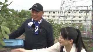 2018年9月放送 『JA京都やましろ「いちじく」 木村さん(城陽市)』 城陽...