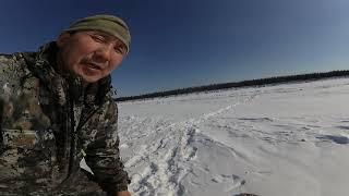 язь Рыбалка Ловим язей Река Вилюй FULL HD 04 04 21г