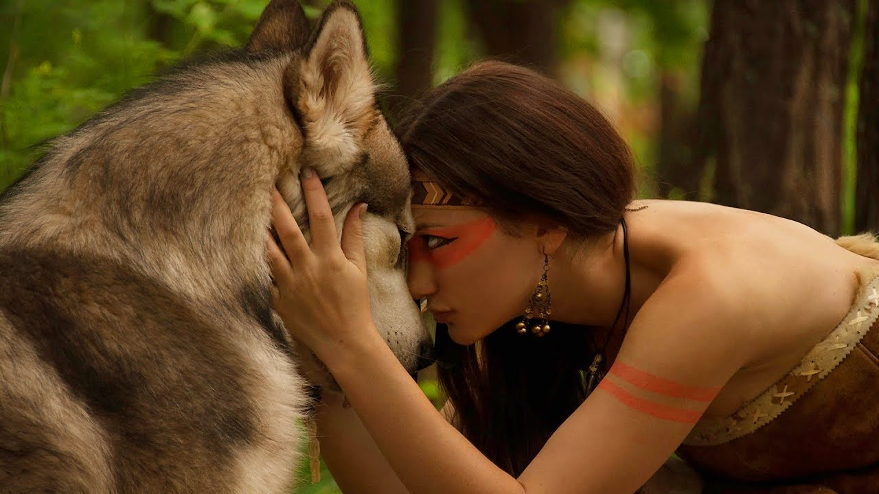 Native American Indian Dog Care