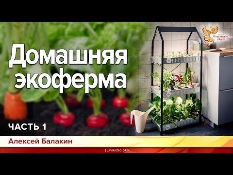 Домашняя экоферма. Алексей Балакин. Часть 1