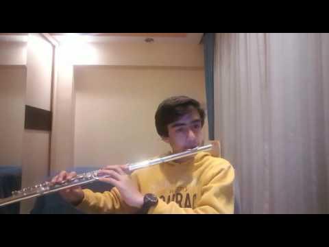 mesneviden ders aldım for flute