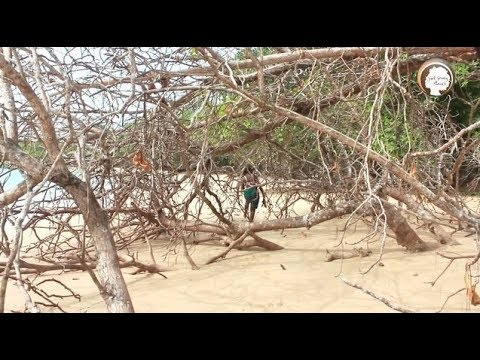 Girl Going Places - Travel Africa: Ep 5 (Ghana)
