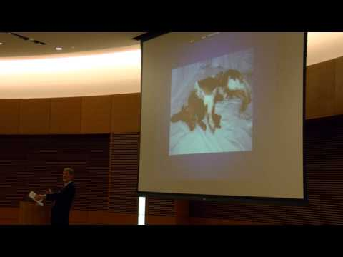 Ethics and Efficacy of Experimentation on Animals: Common Ground, or No Man's Land? (Full)