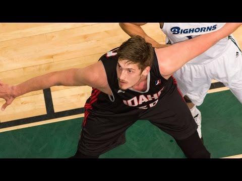 Jazz C Tibor Pleiss 2015-16 NBA D-League Season Highlights