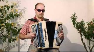 Gambar cover Meneer Holzken speelt op zijn Gouden Accordeon