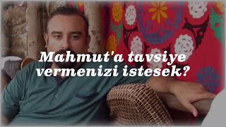 Cici Babam - Mahmut'a Tavsiyeler