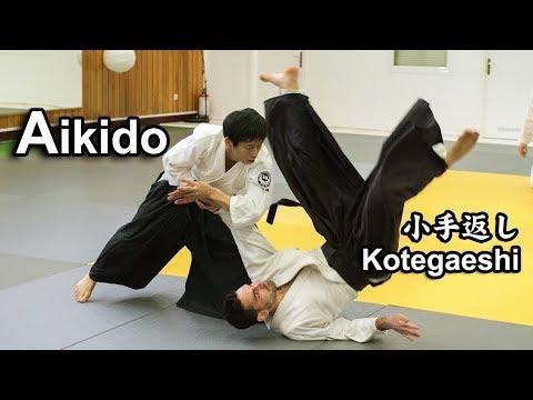Dynamic and Sharp Aikido – KOTEGAESHI in Greece SHIRAKAWA RYUJI shihan
