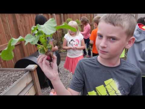 Redtail Ridge school garden