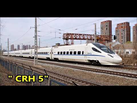 [CHINA RAILWAYS]  Trains at SHENYANG ( LIAONING )  CRH 5 , DF4d , DFII, DF7g  HXd2B , CRH 5