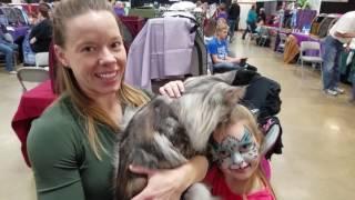 Выставка кошек, Хьюстон. Породистые кошки в США ~ Houston Cats Show