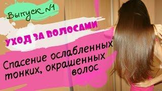 видео Жирные волосы что делать?! / Выбираем шампунь / Как часто мыть волос