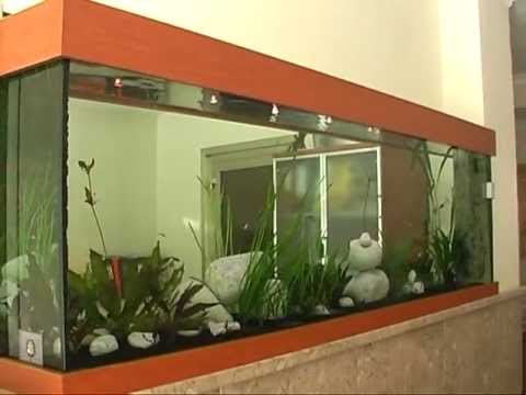 aquarium sur mesure d 39 eau douce odyss e aquarium youtube. Black Bedroom Furniture Sets. Home Design Ideas